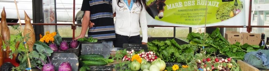 Fruits et légumes bio disponibles