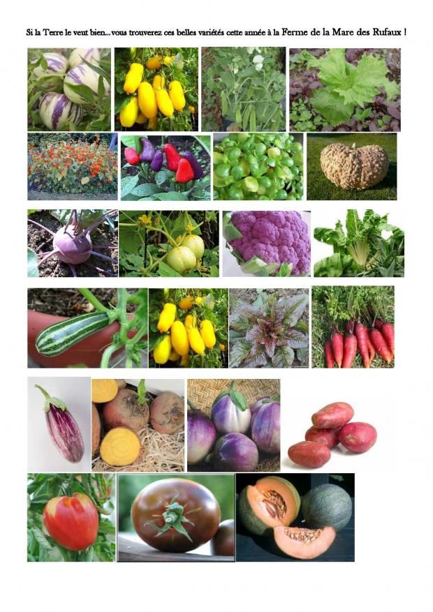 La sélection variétale de la ferme pour cette année s'affine